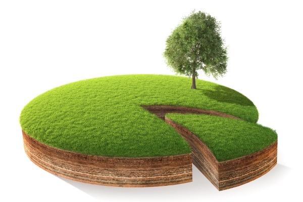 Долевая собственность земли