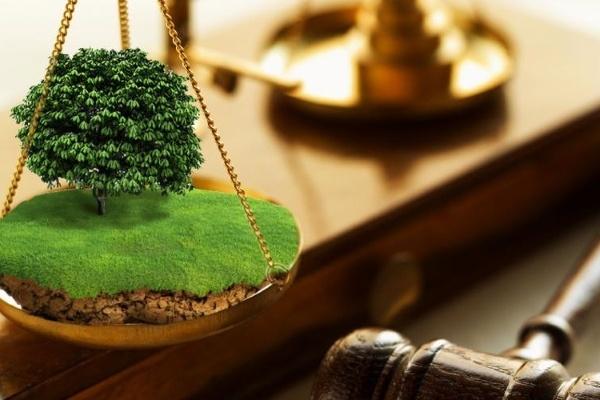 порядок решения земельных споров - фото 11